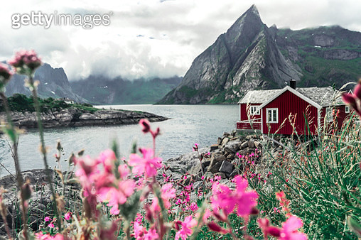 Red rorbu houses in fisherman village Hamnoy near Reine, Moskenes, Lofoten Islands, Norway - gettyimageskorea