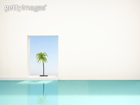 palm tree at swimming pool - gettyimageskorea