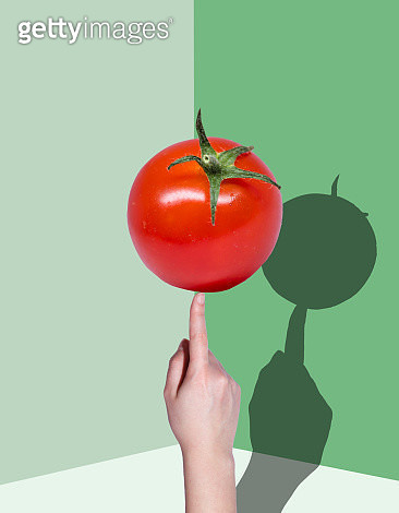 Hand Holding tomato with a shadow - gettyimageskorea