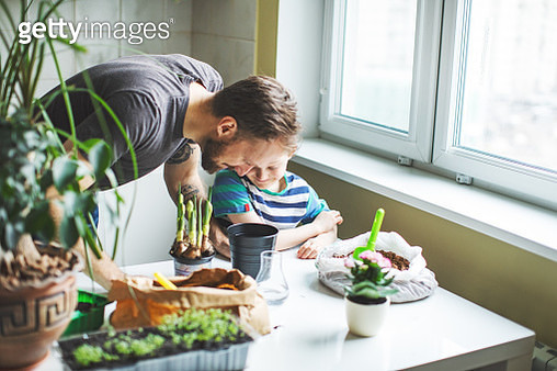 Father and son planting at home - gettyimageskorea