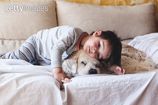 Living with Pets - gettyimageskorea