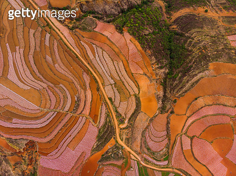China, Yunnan province, Dongchuan, Red Land - gettyimageskorea