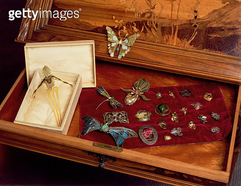 Selection of Art-Nouveau brooches/ buckles and buttons by English/ German/ French and Scandinavian makers - gettyimageskorea