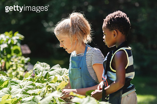 Little african boy with her cousin vegetables from the garden - gettyimageskorea