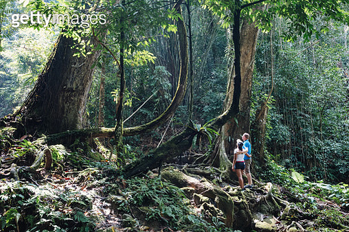 Adult couple in the tropical forest, Phang Nga bay, Thailand (MODEL RELEASED) - gettyimageskorea