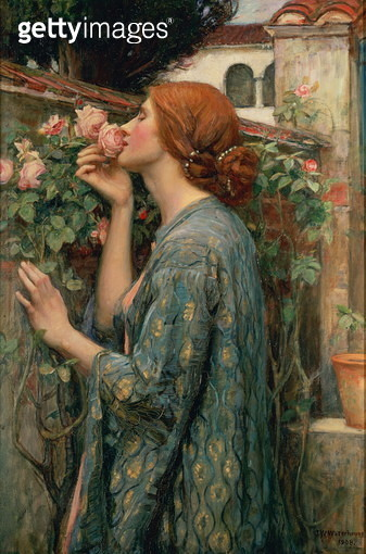 The Soul of the Rose, 1908 (oil on canvas) - gettyimageskorea