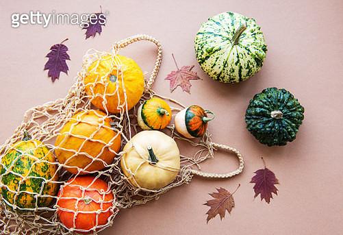 Pumpkins in string bag and leaves - gettyimageskorea