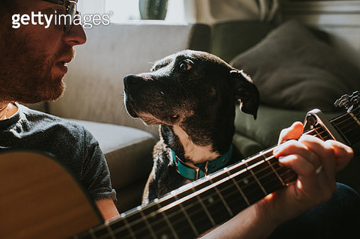 Man playing an acoustic guitar, while black dog sits beside him and listens. - gettyimageskorea