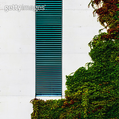 Artificial - natural - gettyimageskorea
