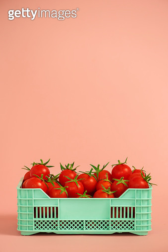 Cherry tomatoes in green plastic crate - gettyimageskorea