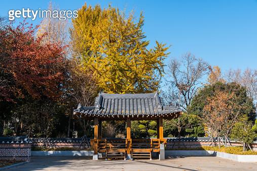 용두산공원, 부산광역시 중구 광복동 - gettyimageskorea