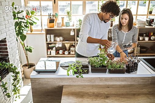 Millennial multi-ethnic couple taking care and watering kitchen herbs at their apartment - gettyimageskorea