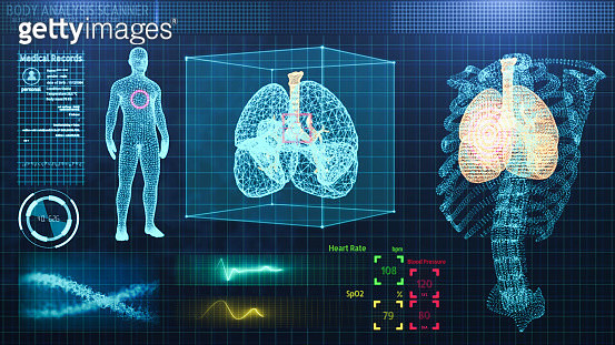 Three Dimensional user interface HUD of medical technology,rib and lung Wire-frame Model of Human organ analysis background for medical technology - gettyimageskorea