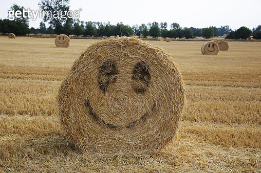 A wheat field filled with straw bales with smiley´s painted on them after a poor dry season in Denmark shows the Danish positive thinking attitude. - gettyimageskorea