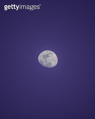 달 - gettyimageskorea