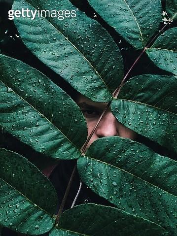 Portrait Of Man Looking Through Wet Plants - gettyimageskorea