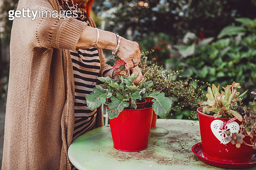 active senior woman enjoying planting - gettyimageskorea