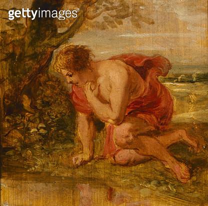 Narcissus - gettyimageskorea