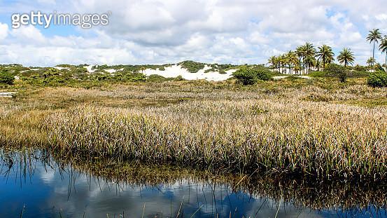 Praia de Massarandupio - gettyimageskorea