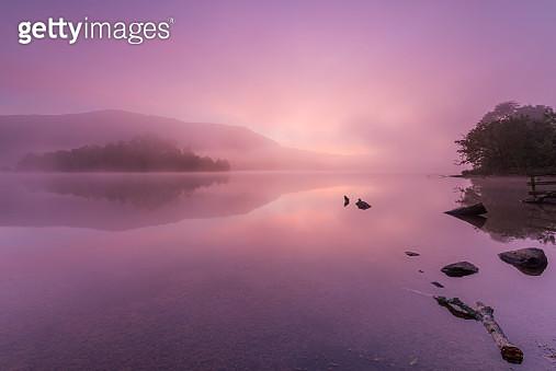 Grasmere Lake pink sunrise. Lake District National park. UK. Europe. - gettyimageskorea