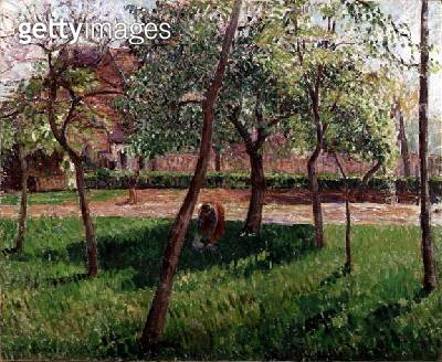 <b>Title</b> : Walled Garden at Eragny, 1895 (oil on canvas)<br><b>Medium</b> : oil on canvas<br><b>Location</b> : Private Collection<br> - gettyimageskorea