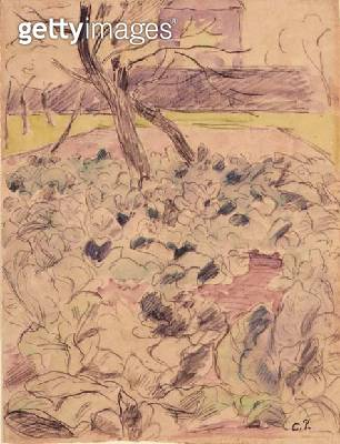 <b>Title</b> : The Cabbage Field, c.1880 (pencil & w/c on paper)<br><b>Medium</b> : pencil and watercolour on paper<br><b>Location</b> : Private Collection<br> - gettyimageskorea