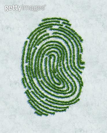 Green fingerprint - gettyimageskorea