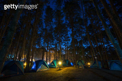camping tent for traveller in forest - gettyimageskorea