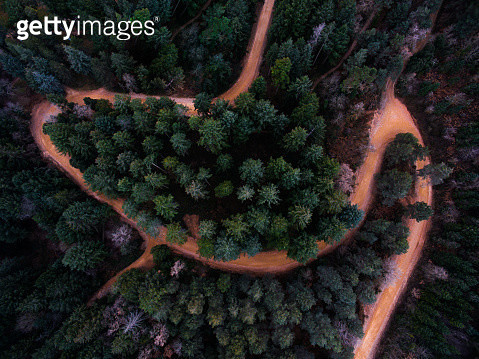 The Montseny nature reserve with beautiful colors. - gettyimageskorea