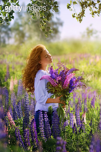A beautiful long haired girl in profile in a lilac blouse and jeans with a bouquet of purple flowers on a Sunny summer day in a field among purple flowers - gettyimageskorea