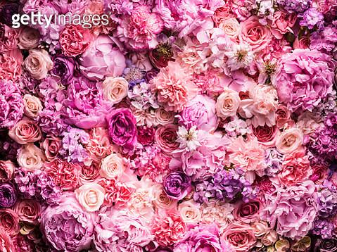 Various cut flowers, detail - gettyimageskorea