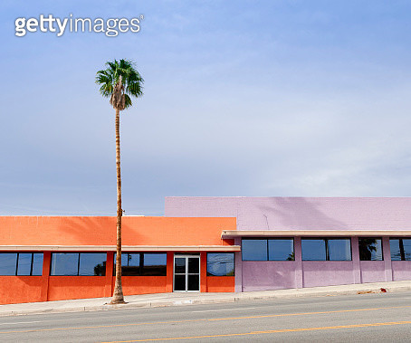 Palm tree in front of colorful buildings - gettyimageskorea