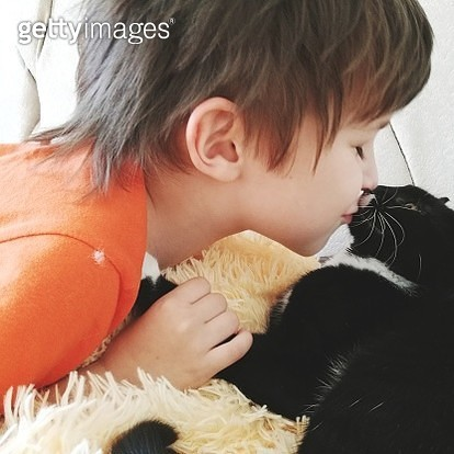 Close-Up Of Boy Kissing Cat On Bed - gettyimageskorea