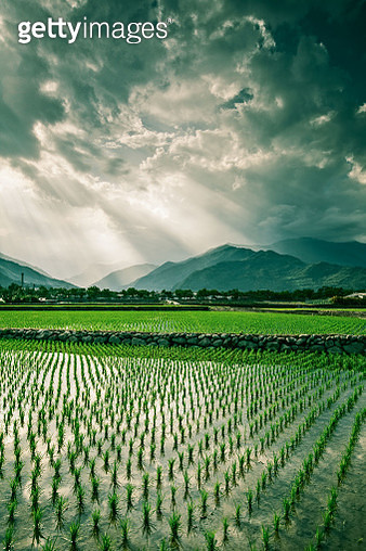 Green Fields, Mountains and White Clouds - gettyimageskorea