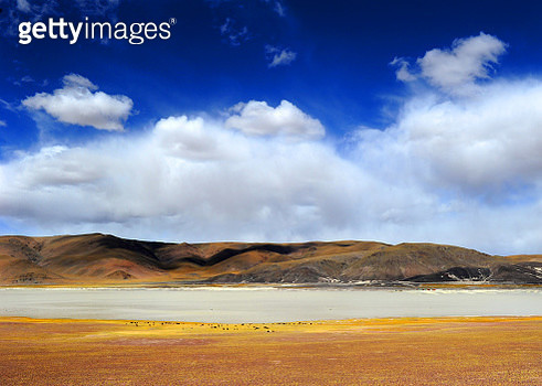 The scenery of Zhongba County in Tibet - gettyimageskorea