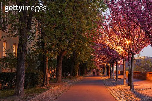 Spring Evening, Castle Hill, Budapest - gettyimageskorea