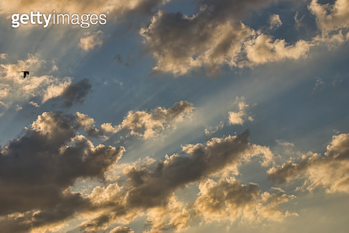 Sunset Skies - gettyimageskorea