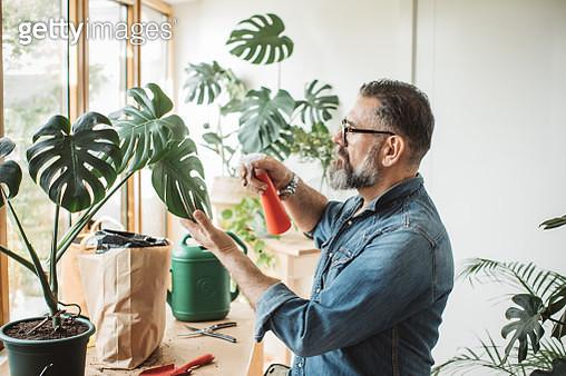 Flower gardening during isolation period - gettyimageskorea