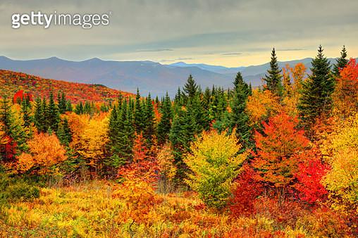 Autumn foliage in the White Mountains of New Hampshire - gettyimageskorea