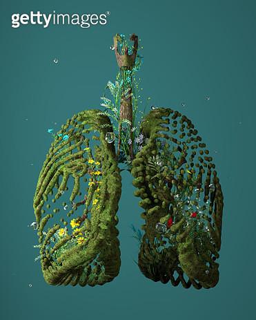 Green Lungs - gettyimageskorea