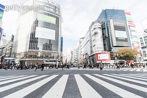 Shibuya Crossing Tokyo Japan - gettyimageskorea