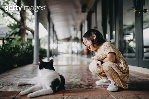 Cute little girl holding a straw hat and soft toy having eye contact and playing with the kitten outdoors in the garden - gettyimageskorea