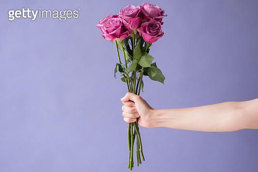 Arm of Caucasian woman holding bouquet of roses - gettyimageskorea