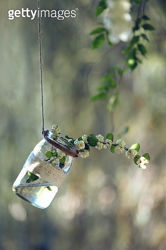bottle inside with flower in wedding scene - gettyimageskorea