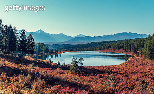Kidelu lake and autumn forest in Altai, Russia - gettyimageskorea