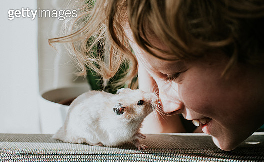 Boy and a cute hamster. - gettyimageskorea