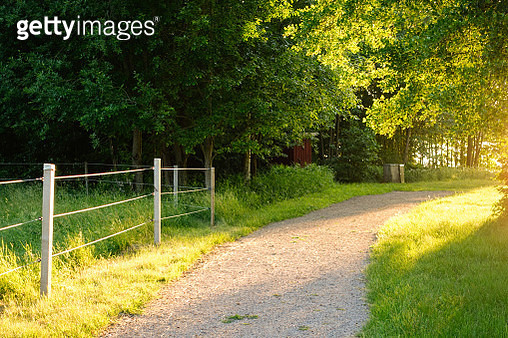 A path in pastures in the evening sun in the summer - gettyimageskorea