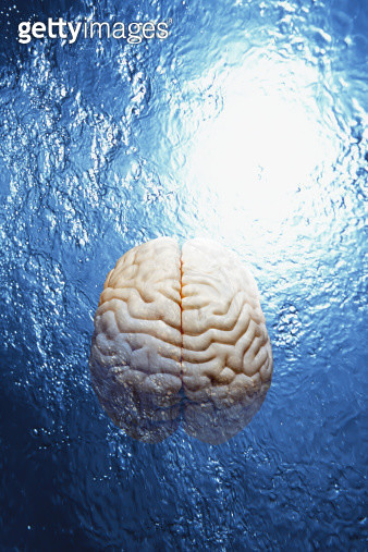Double exposure of water and model  of human brain - gettyimageskorea