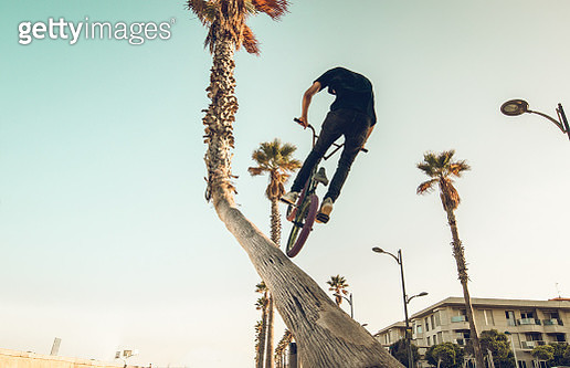 Low Angle View Of Man Doing Stunt With Bicycle By Tree Against Sky - gettyimageskorea