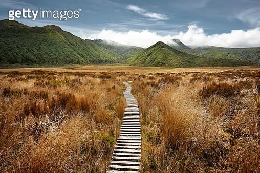 Empty hiking path in open landscape - gettyimageskorea